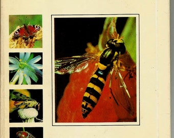 Insects, Butterfly, Dragonfly, Beetle, Set of 25, Russian Vintage Postcard Photo Unused 1980