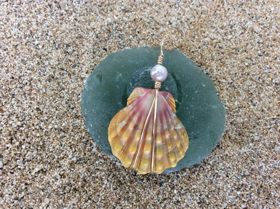 Hawaiian Sunrise Shell, Fresh Water Keshi Pearl, 14k Gold Filled Chain Necklace