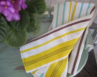 Striped Linen Dish Towel