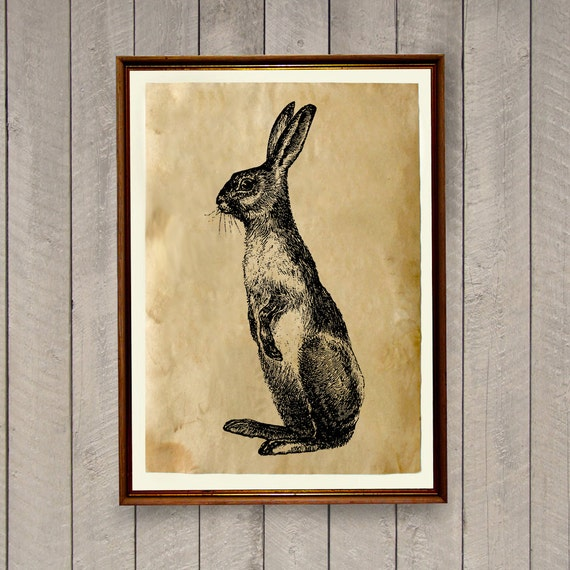 Animal Home Decor: Rabbit Poster Animal Art Print Rustic Home Decor AK493