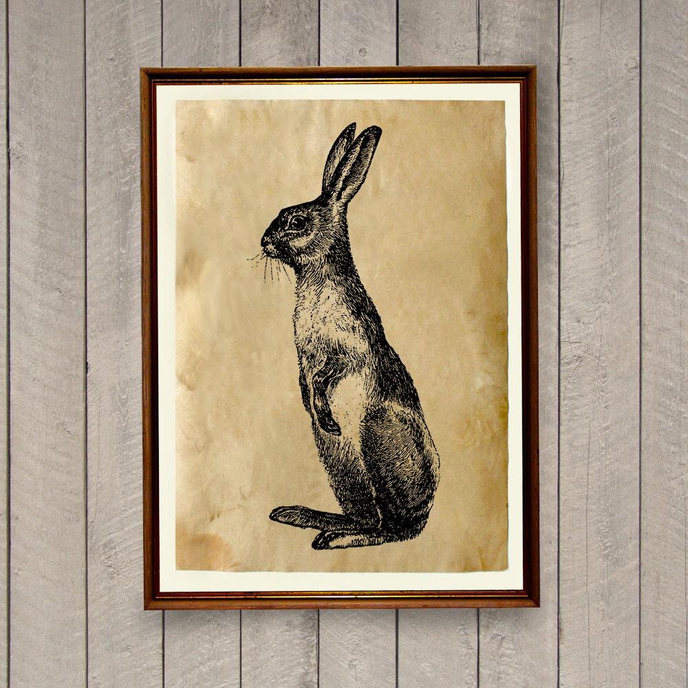 Rabbit poster animal art print rustic home decor ak493 for Rabbit decorations home