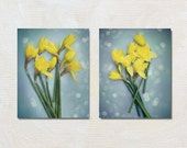 Daffodil Photography Set, Yellow and Blue Picture Set, Floral Wall Art, Spring Flower Photo Set, Vertical Print Set, Portrait Orientation