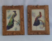 Real Feather Peacock Bird Wall Hangings - Pair - Hand Painted Tree Branch - Professionally Framed - Vintage Exotic - OOAK - Zen Home Decor