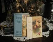 Set of 2 Antique Decorative Books, Beautiful Covers