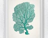 Sea fan coral no.05 - sea life print-Marine  sea life illustration A4 print SPC034