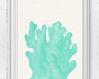 Sea weed coral- sea life print- Wall home decor  , Marine  sea life illustration A4 print SPC073