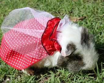 Guineapig cape , halloween outfit , little red riding hood cape,