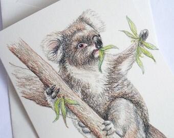 Koala greeting card. Australian wildlife art. Aussie favourite animal. Native mammal. Gum leaves. Sitting in tree