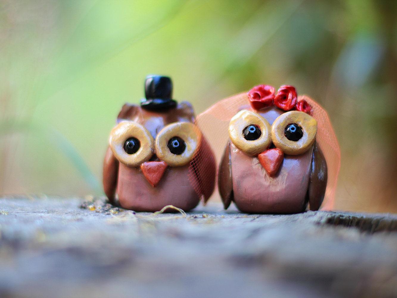 Owl Wedding Cake Topper Polymer Clay Owl Couple Cake Topper