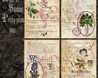 Book of Shadows ~ Pretty poisons Set