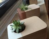 Desk Top Succulent Planter (White)
