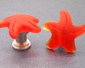 Beach Glass Orange Starfish Cabinet Knobs  - Set of 2, Stone Cabinet Knobs, Kitchen cabinet knobs, Beach Decor, Starfish, Starfish Knobs