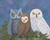 Owls Fine Art Print Three...