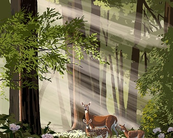 Willamette Valley, Washington - Deer in Forest (Art Prints available in multiple sizes)