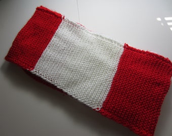 Wisconsin Badgers Scarf