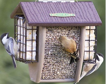 Shield Sunflower Nut & Suet Feeder