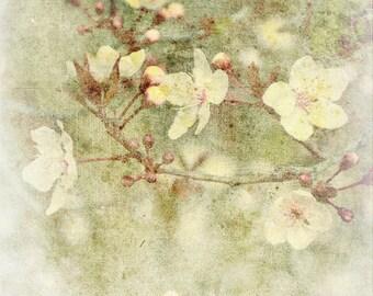 Faded Blossoms,bedroom decor, neutral tones, green, Floral Wall Art,