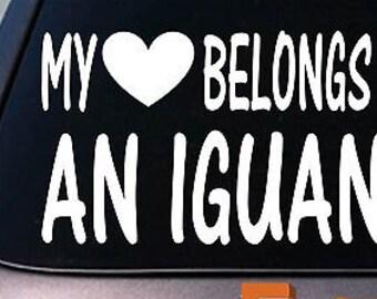 My Heart Belongs To An Iguana Sticker Decal *D937*