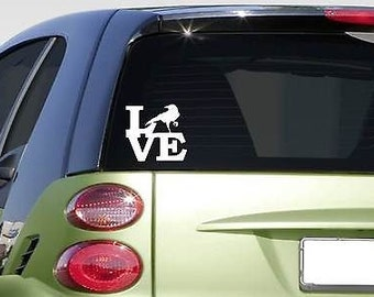 "Crow Love 6"" Sticker *F221* Decal Zoo Blackbird Raven Mynah"