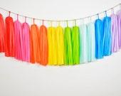 Crayon Rainbow Tassel Garland, Rainbow Baby Shower, Rainbow Nursery, Rainbow Cake Smash, Rainbow Banner, First Birthday, Rainbow Backdrop