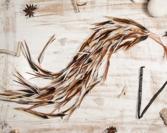 Siena White Warrior Natural Feather Hair Extensions