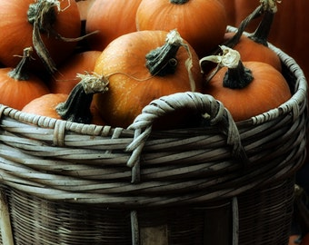 A Basket of Pumpkins #2