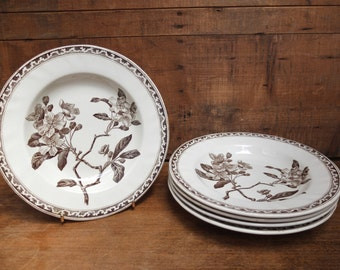 5 old plates Earth iron Vintage Made in France