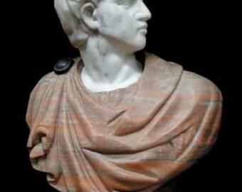 70.4245 Solid Marble Busts of Julius Caesar