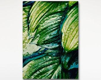 Tropical Rain Canvas, Wet Leaves Photo, Green Wall Art, Nature Photo Print
