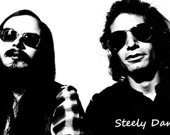 Steely Dan Poster, Rock Musicians, Jazz, Pop, Soft Rock