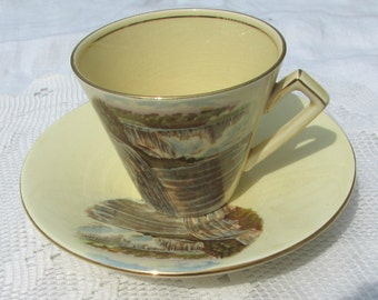 Vintage Royal Winton Niagara Falls Tea Cup and Saucer