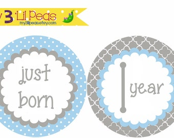 Add-On Blue and Gray Just Born & 1 Year Onesie Stickers