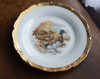 Vintage Duck/ Mallard display plate, Czechoslovakian pottery/ ceramic