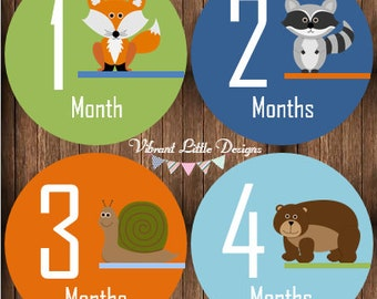 Monthly Bodysuit Stickers Boy, Milestone Stickers, Month Stickers, Baby Month Stickers, Baby Stickers  #136