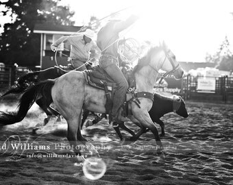 Cowboy Calf Roping! Black and White Photographic Print, Photograph, Print, Photo, Home Decor, Wall Decor, Wall Art, Country, Rodeo, Stampede