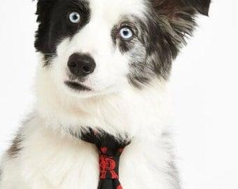 Red Skulls Puppy Dog Tie - Slide On
