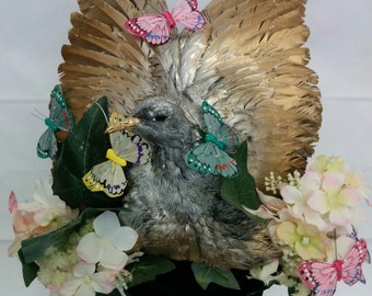 Taxidermy Midsummer Nights Dream Headpiece