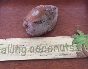 "Hawaii wood sign ""falling coconuts"" hand painted"