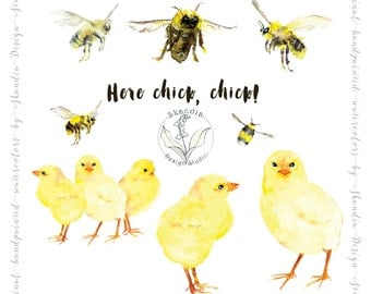 Watercolor clipart, clipart chick, clipart bees, clipart watercolor, nature clipart, diy crafts, digital scrapbook, hand drawn clipart