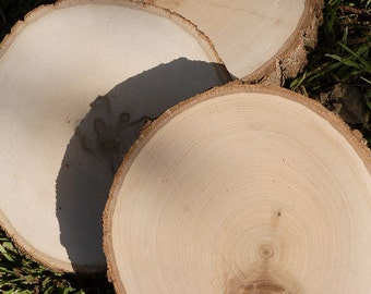 """7""""-9"""" Wood Round Tree Slice, Rustic Wood Slices With Bark, Kiln Dried"""