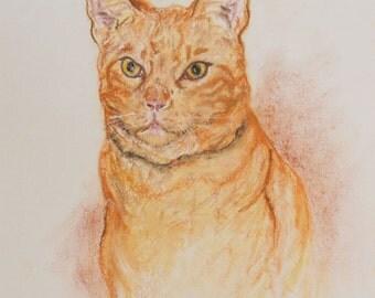 Orange Tabby Cat Art By Cori Solomon