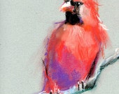 """Cardinal Pastel Drawing on Paper - """"Wait - When Did You Hear That?"""" - 8"""" x 10"""" - Bird Art"""