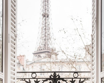 Paris Photography - Winter Afternoon, Paris, Ornate Iron Balcony, Shutters, Architecture Travel Photograph, Large Wall Art, French Decor