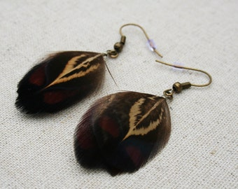 Rusty brown and red Pheasant feather earrings
