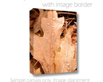 Autumn Leaf Raindrops Photograph Fine Art Photography Canvas Wall Hanging 8x10/11x14/16x20/20x30 Fallen Oak Leaves Neutral Home Decor