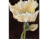 ACEO PRINT, Brown Hued Poppy ACEO, Fine Art Print, White Poppy on Sepia Background, Kylie Fogarty Art, Collectable Art