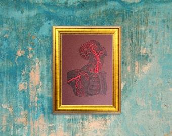 Anatomy Art. Torso & Head Anatomy. Anatomical Head. Thread Art. Doctor's Gift. Medical Art. Science Art. Paper Embroidery. Anatomical Decor