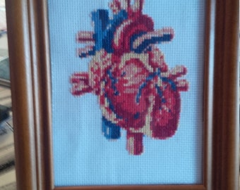 Anatomical Heart Cross Stitch