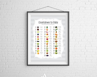 Pregnancy Poster with Weekly Food Size Comparison 8x10 (Digital)