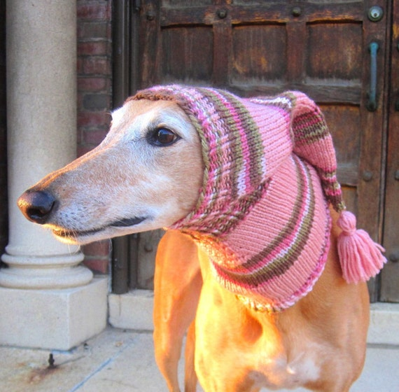 Dog hats-hand knit dog hat/greyhound hat/whippet hat/hound